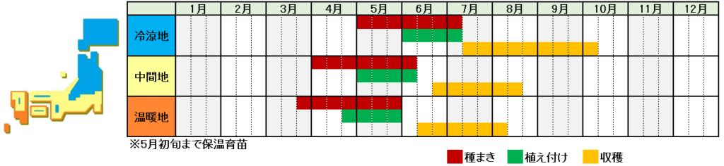 枝豆栽培時期横