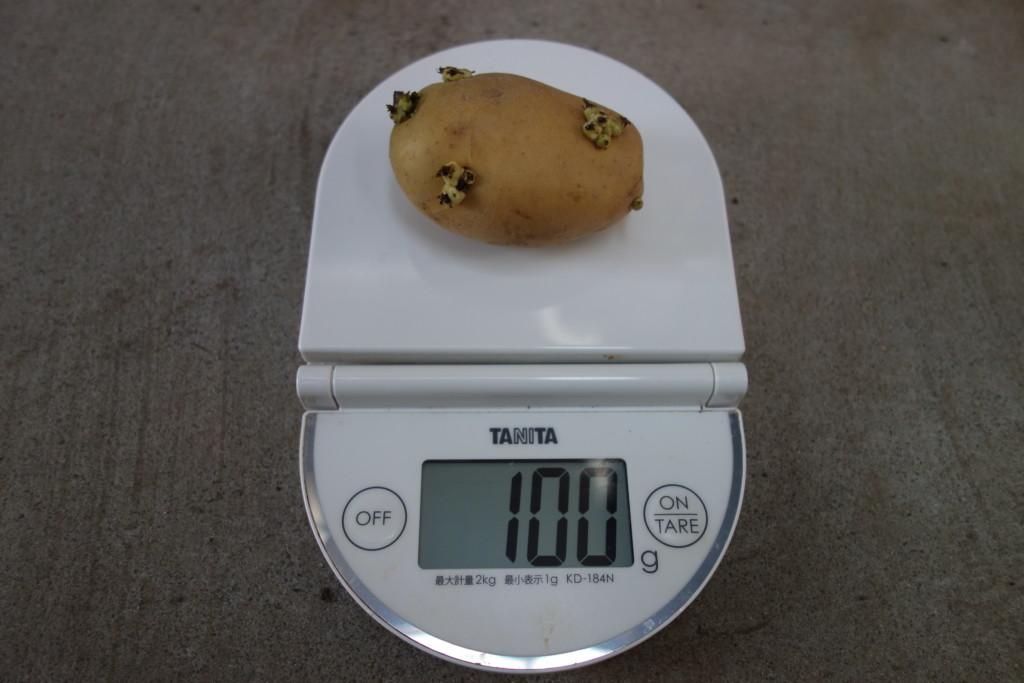 大きな種芋