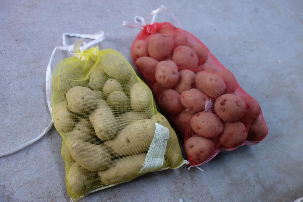 農協購入の種芋