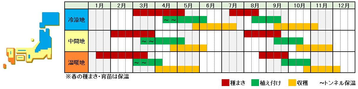 リーフレタス栽培時期横