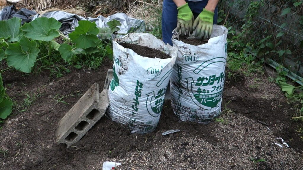 袋栽培をブロックで固定