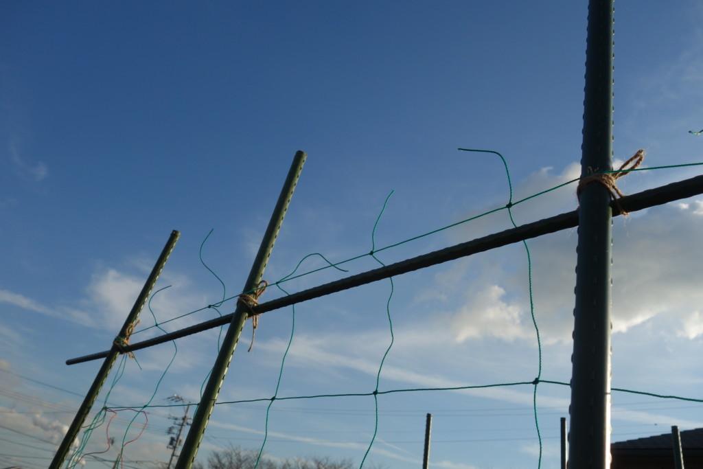 上の支柱にネットをひっかける