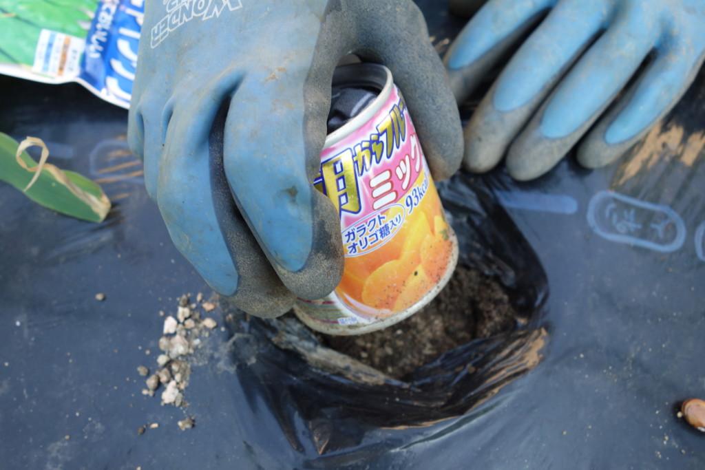 植穴をつくるため空き缶を使っている様子