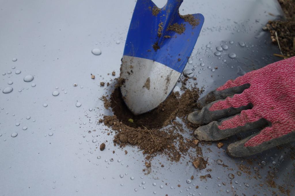 植穴を掘る様子
