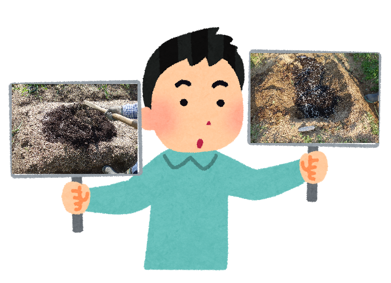 全面施肥と溝施肥の比較